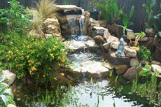 Outdoor Water Garden with Waterfall